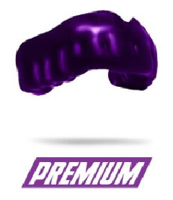 PROTEGE DENTS PREMIUM